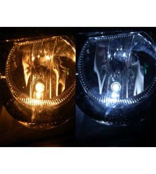 W5W Bulb LED 12V Xenon White