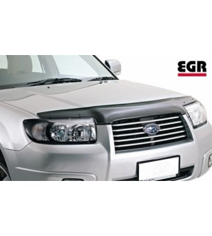 Forester 06-07 Headlamp Protectors blank