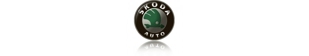 Skoda side protection