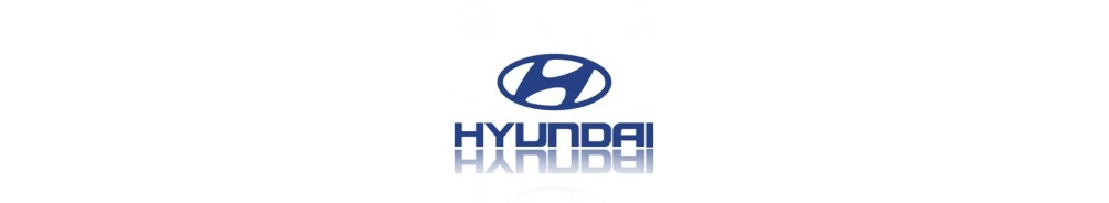 Hyundai H1 2008- Accessories Verstralershop