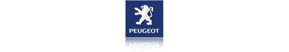 Peugeot 404 accessories online at Verstralershop